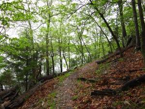 Lake trail...