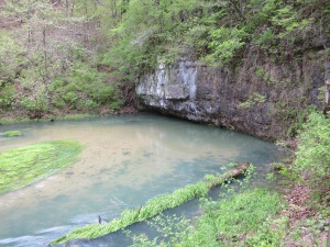 down at the spring...look at it bubbling out!